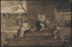 Ansichtskarte Künstler Glückwunsch Pfingsten Tiere Katzen 1913