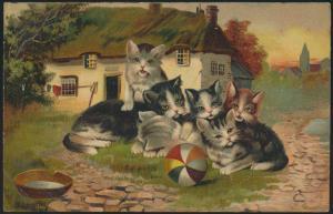 Ansichtskarte Künstler Tiere Katzen beim Spielen 1909