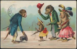 Ansichtskarte Tiere personifizierte Affen herrliches Litho Künstlerkarte 1906