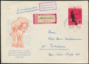DDR Einschreiben R-Brief 173m EF 2261 Stralsund nach Potsdam Tiere aus den Zoos