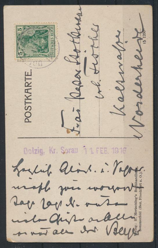 Ansichtskarte Schloß Dolzig Sommerfeld Geburtsstätte Kaiserin Auguste Viktoria 1