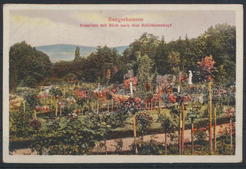 Ansichtskarte Sangerhausen Rosarium Schlößchenkopf Sachsen Anhalt 0