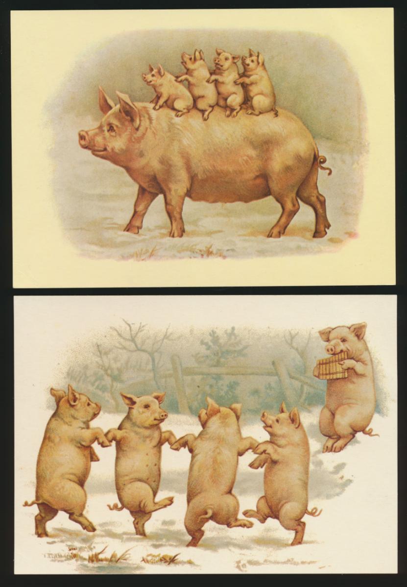 Ansichtskarte Schweine Glücksschweine Tiere eine alte + 4 Reprint um 1900 0