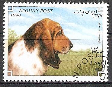 Afghanistan 1758 o Basset (2017333)