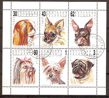 Bulgarien 3929-3934 o Kleinbogen Hunde (2015724)