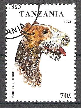 Tansania 1602 o Foxterrier (2017303)