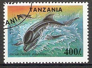 Tansania 1780 o Grauwal (2018172)