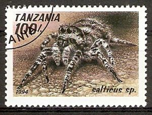 Tansania 1800 o Springspinne (2015807)