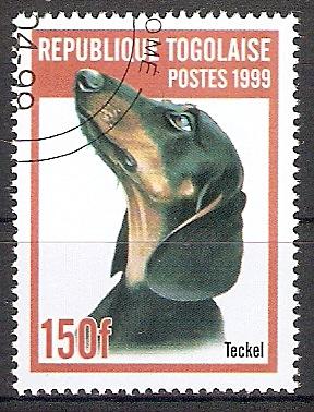 Togo 2824 o Kurzhaardackel (2017307)