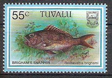 Tuvalu 762 ** Hawaiischer Ruby-Snapper (2017595)