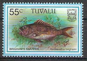 Tuvalu 762 ** Hawaiischer Ruby-Snapper (2017595)