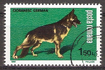 Rumänien 3765 o Deutscher Schäferhund (2017238)