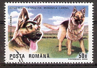Rumänien 4603 o Deutscher Schäferhund (2017239)