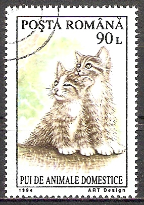 Rumänien 5055 o Junge Kätzchen 1994 (201890)