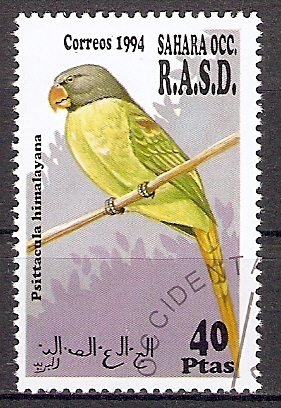 Sahara OCC aus 1994 o Himalaya Papagei (201796)