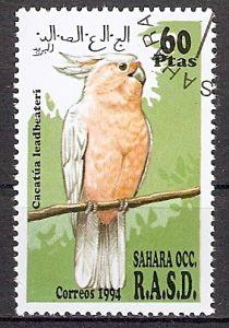 Sahara OCC aus 1994 o Inka-Kakadu (201797)
