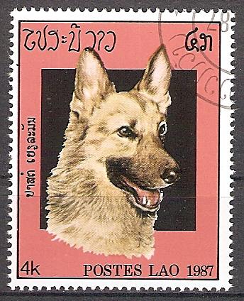 Laos 985 o Schäferhund (201778)