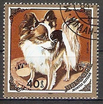 Mongolei 1677 o Papillon Hund (2017482)