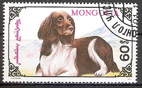 Mongolei 2324 o Westhighland Spaniel (2017486)