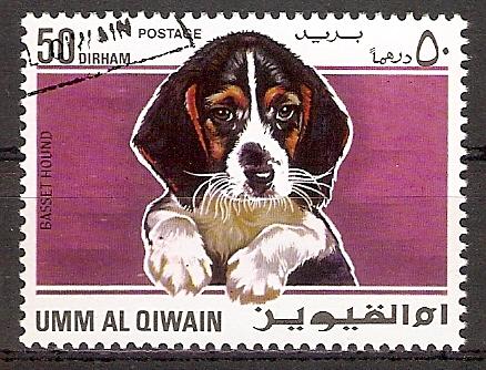 Umm-al-Kaiwain 212 A o Basset (2017232)