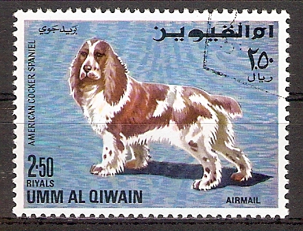 Umm-al-Kaiwain 216 A o Cocker Spaniel (2017235)