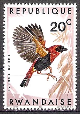 Ruanda 249 A ** Schwarzstirn-Oryxweber (2017667)