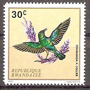 Ruanda 501 A ** Waldnektarvogel (2018118)