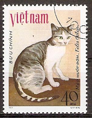 Vietnam 1067 o Luffakatze (20151102)