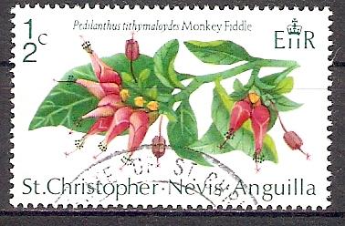 St. Kitts - Nevis 230 o Euphorbia tithymaloides / Teufelsrückgrat (2017657)