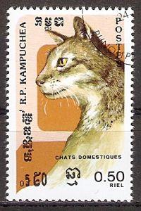 Kambodscha 667 o Schildpatt Katze (2017227)