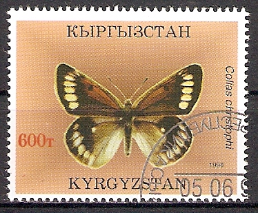 Kirgisistan 134 o Fergana-Heufalter (201747)