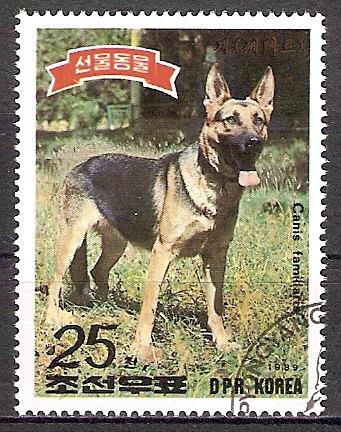 Korea-Nord 2993 o Deutscher Schäferhund (2017117)