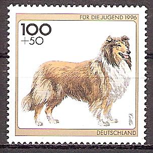 BRD 1839 ** Jugend 1996 - Collie (201990)