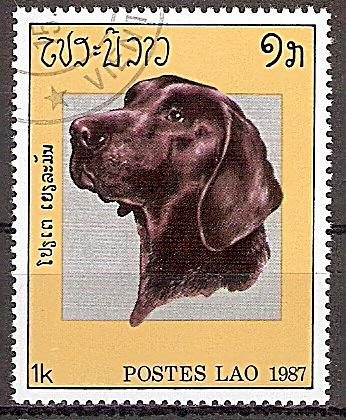 Laos 982 o Hunde (2019130)