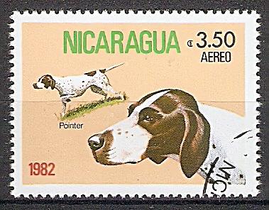Nicaragua 2251 o Vorstehhund / Pointer (2019140)