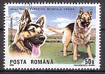 Rumänien 4603 o Deutscher Schäferhund (2019150)