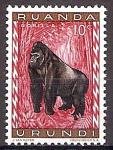 Briefmarke Ruanda-Urundi Mi.Nr. 161 A ** Geschützte Tiere 1959 - Motiv: Gorilla (Gorilla gorilla) (#10004)