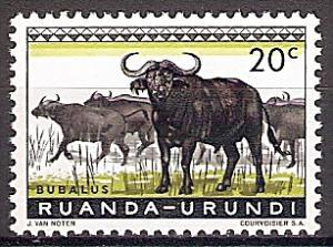 Briefmarke Ruanda-Urundi Mi.Nr. 162 A ** Geschützte Tiere 1959 - Motiv: Kaffernbüffel (Syncerus caffer) (#10005)