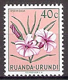 Briefmarke Ruanda-Urundi Mi.Nr. 137 ** Einheimische Flora 1953 - Motiv: Ipomoea (#10006)