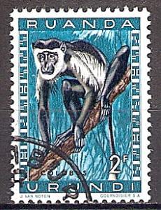 Briefmarke Ruanda-Urundi Mi.Nr. 167 A o Geschützte Tiere 1959 - Motiv: Guereza (Colobus sp.) (#10017)