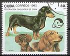 Briefmarke Cuba Mi.Nr. 3561 o Symposium der Kynologen-Föderation 1992 Motiv: Hunde - Dackel (#10037)