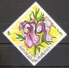 Briefmarke Burundi Mi.Nr. 890 o Orchideen 1972 Motiv: Blumen - Orchideen (Eulophia cucullata) (#10141)