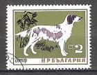 Briefmarke Bulgarien Mi.Nr. 1463 o Hunde 1964 Motiv: Hunde - Englischer Setter (#10154)