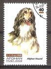 Briefmarke Afghanistan Mi.Nr. 1984 o Hunderassen 2003 Motiv: Hunde - Afghane (#10177)