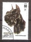 Briefmarke Afghanistan Mi.Nr. 1985 o Hunderassen 2003 Motiv: Hunde - Riesenschnauzer (#10179)