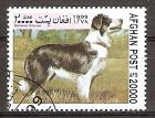 Briefmarke Afghanistan Mi.Nr. 1857 o Hunde 1999 Motiv: Hunde - Border Collie (#10180)