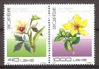 Briefmarke Albanien Mi.Nr. 3583-3584 ** Paar !!! RRR ! Einheimische Flora 2018 - Motiv: Pflanzen - Okra (Abelmoschus esculentus) Echtes Johanniskraut (Hypericum perforatum) (#10198)