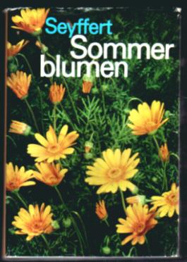 Sommerblumen - Willy Seyffert