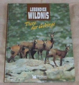 Tiere der Gebirge - Lebendige Wildnis
