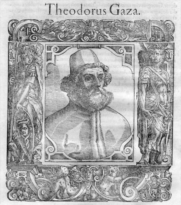 Theodorus Gaza / Theodores Gazes Portrait